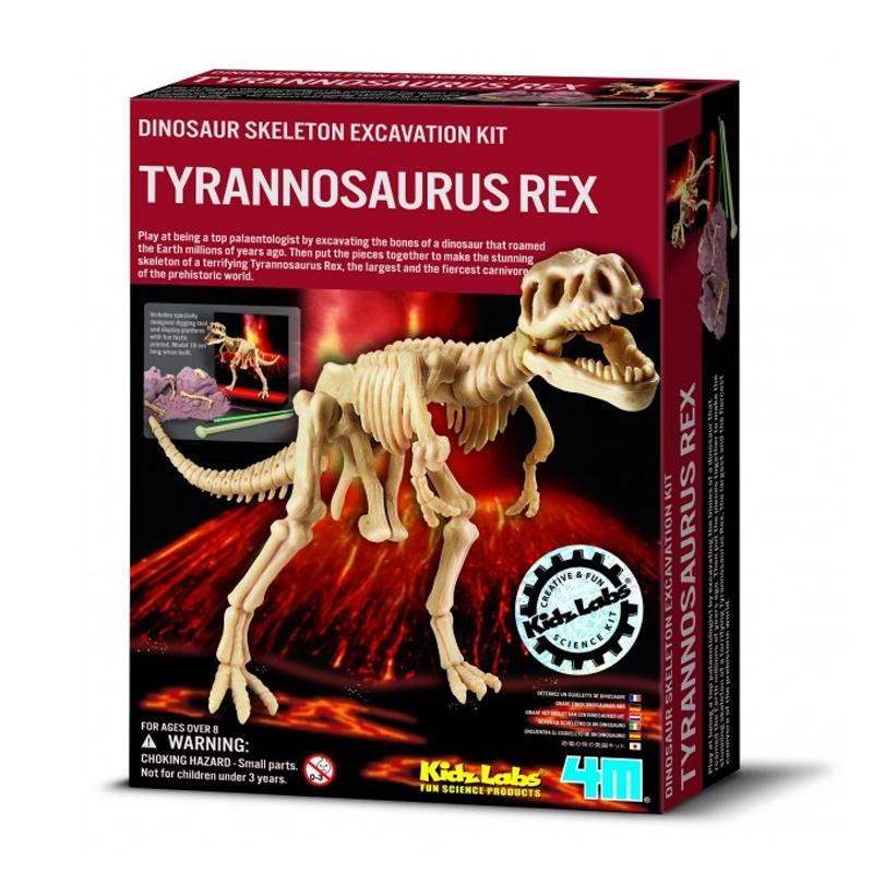 Image of   4M KidzLabs eksperiment legetøj, Tyrannosaurus Rex skelet