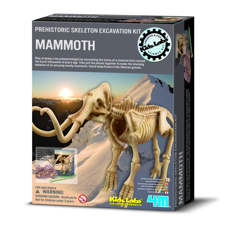Image of   4M KidzLabs eksperiment legetøj, Mammut skelet