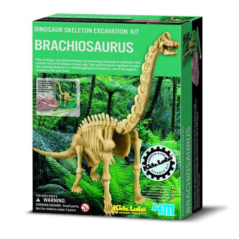 Image of   4M KidzLabs eksperiment legetøj, Brachiosaurus skelet
