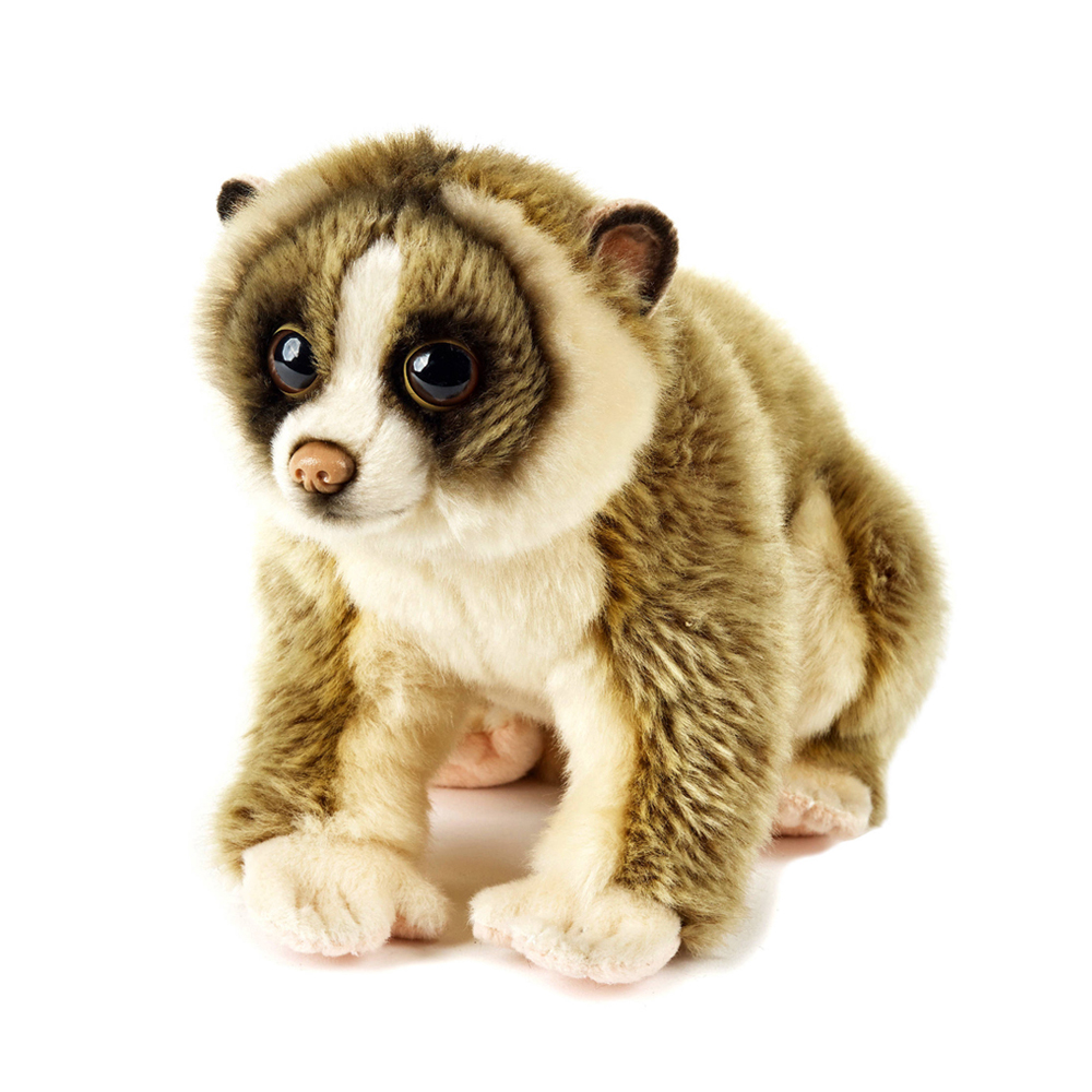 Image of   National Geographic bamse, loris 24 cm