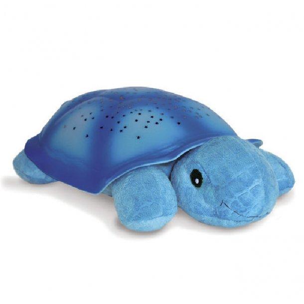 Twilight skildpadde, blå